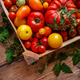Ripe tomatoes - PhotoDune Item for Sale