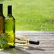 White wine bottles - PhotoDune Item for Sale