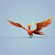 Fire Bird Phoenix