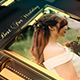 Wedding - VideoHive Item for Sale