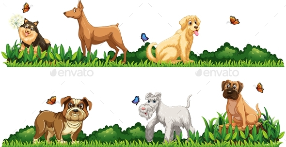 different kind of dogs in the garden animals characters - Garden Animals