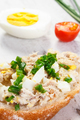 Closeup of baguette with fresh mackerel or tuna fish paste, healthy nutrition concept - PhotoDune Item for Sale