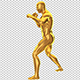 MMA Fighting Stance - VideoHive Item for Sale
