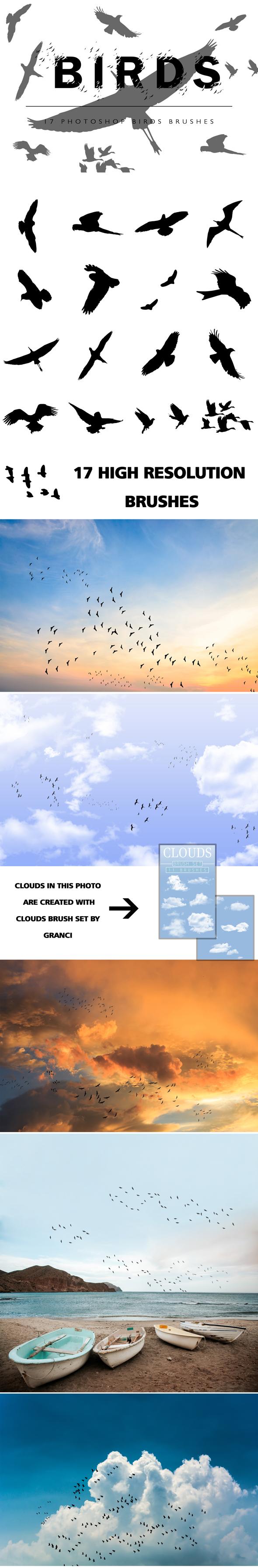 Birds Photoshop Brushes - Brushes Photoshop