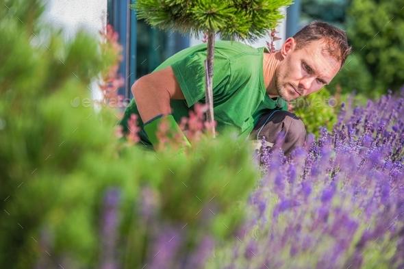 Young Gardener in the Garden - Stock Photo - Images