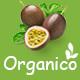 Organico - Organic Farm and Healthy Food WooCommerce WordPress Theme - ThemeForest Item for Sale