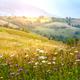 Beautiful summer sunrise in the Carpathian mountains. Ukraine, E - PhotoDune Item for Sale
