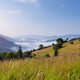 Fantastic foggy morning and bright grass in sunlight. Carpathian - PhotoDune Item for Sale