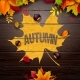 Autumn Illustration with Colorful Leaves - GraphicRiver Item for Sale