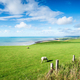The Ceredigion Coastline in Wales - PhotoDune Item for Sale