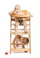 Baby girl sitting in high chair and eating apple, preschool boy - PhotoDune Item for Sale