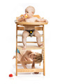Baby girl sitting in high chair and eating apple - PhotoDune Item for Sale