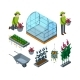Farm Greenhouse Isometric. Agricultural