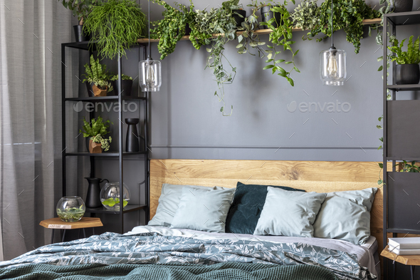 Grey Pillows On Wooden Bed In Dark Bedroom Interior With Lamps A Stock Photo By Bialasiewicz