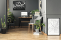 Fresh green plants in real photo of dark room interior with wain - PhotoDune Item for Sale