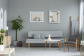 Posters above grey sofa in minimal living room interior with pla - PhotoDune Item for Sale