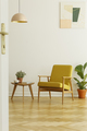 Yellow armchair and coffee table with a cup and plant on a herri - PhotoDune Item for Sale