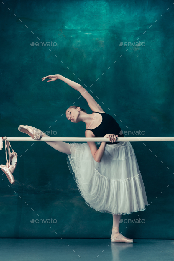 the best attitude b34a6 f0bd9 The classic ballerina posing at ballet barre