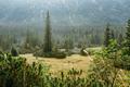 Tatra National Park, Poland. Small Mountains Lake Zabie Oko Or M - PhotoDune Item for Sale
