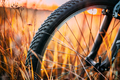 Bicycle Wheel In Dry Autumn Yellow Meadow Grass. Close Up Detail - PhotoDune Item for Sale