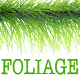 Free Download 30 Green Foliage Brushes - Vector Adobe Illustrator Pattern Plant Brushes Nulled