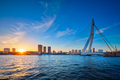 Erasmus Bridge on sunset, Rotterdam, Netherlands - PhotoDune Item for Sale