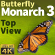Butterfly Monarch 3 - VideoHive Item for Sale