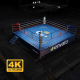 The Boxing Ring - VideoHive Item for Sale