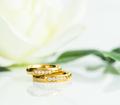 Close up Wedding ring on white_ - PhotoDune Item for Sale