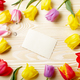 Frame of colorful tulips with blank greeting card on natural woo - PhotoDune Item for Sale
