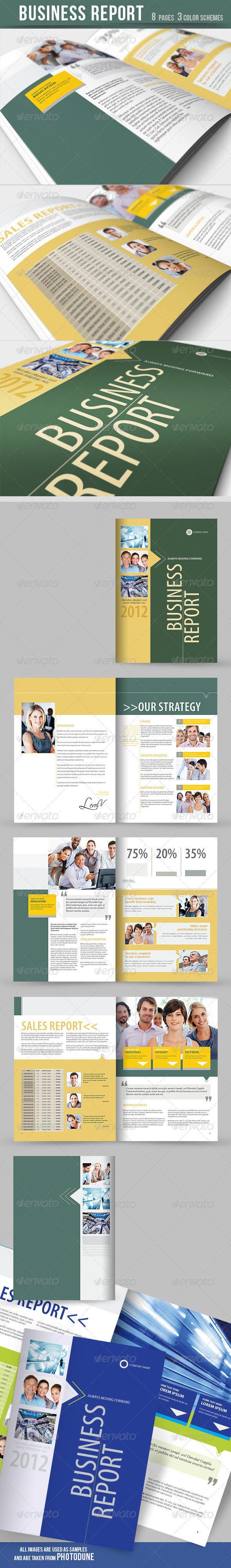 Business Report - Brochure - 3 Color Schemes - Corporate Brochures
