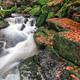 Rapids on Jedlova Creek, Jizera Mountains,  Czech Republic - PhotoDune Item for Sale