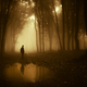 Dark silhouette on edge of lake in mysterious forest with fog - PhotoDune Item for Sale