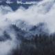 twilight landscapw with fog above forest - PhotoDune Item for Sale