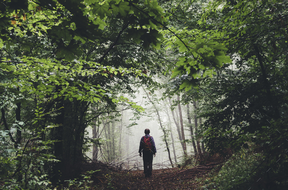 man hiking on misty forest path with green foliage and lush vege - Stock Photo - Images
