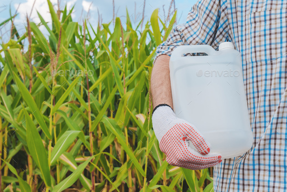 Farmer holding pesticide chemical jug in cornfield - Stock Photo - Images
