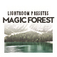 Magic Forest Lightroom Presets - GraphicRiver Item for Sale