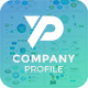 Free Download Company Profile Pitch Deck Powerpoint Template Nulled