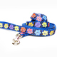 Blue dog leash - PhotoDune Item for Sale