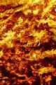 Fire. Volcano incandescent material. Hot charcoal bonfire. Carbon emissions combustion - PhotoDune Item for Sale
