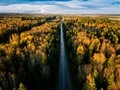 Aerial view of road in autumn forest. Fall landscape with road, red and yellow trees. - PhotoDune Item for Sale