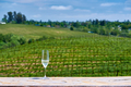 Glass of white wine and vineyards - PhotoDune Item for Sale