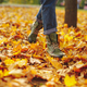 Leather shoes walking on fall leaves Outdoor - PhotoDune Item for Sale