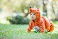 Cute baby girl dressed in fox costume crawling on lawn in park - PhotoDune Item for Sale