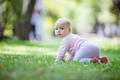 Cute baby girl crawling on lawn in park - PhotoDune Item for Sale