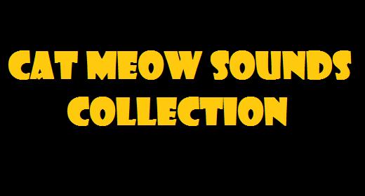 Cat Meow Sounds