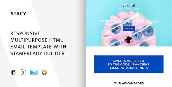 Stacy – Responsive Email + StampReady Builder (Email Templates) Stacy preview