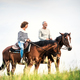 Free Download A senior couple riding horses in nature. Nulled