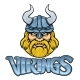 Viking Warrior Mascot Sign Graphic - GraphicRiver Item for Sale