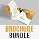 Corporate Bi-Fold Brochure 21
